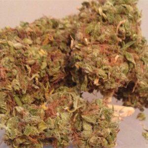 Aloha Marijuana Strain UK