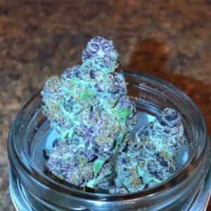 Blueberry Pie Marijuana Strain