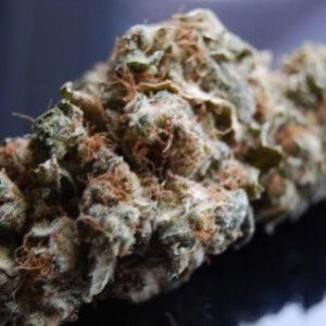 Brazilian Cannabis Strain