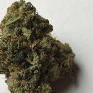Catfish Marijuana Strain UK
