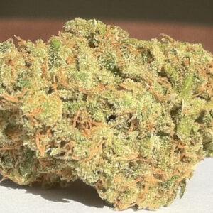 California Dream Cannabis Strain