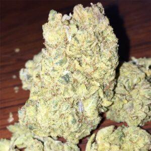 Elmers Glue Cannabis Strain