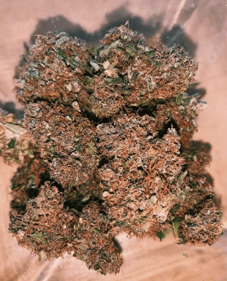 Panama Red Marijuana Strain