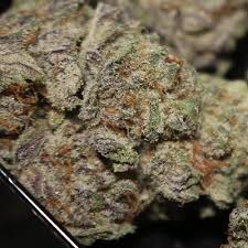 Razzleberry Kush Weed Strain