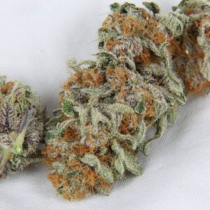Space Queen Weed Strain