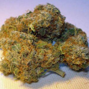 Swazi Gold Marijuana Strain