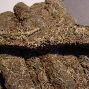 Thai Stick Cannabis Strain