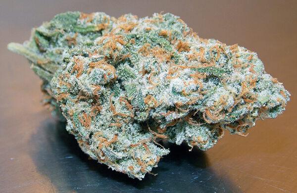 XJ-13 Marijuana Strain UK