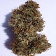 Zamal Weed Strain