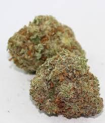 Zed Marijuana Strain UK