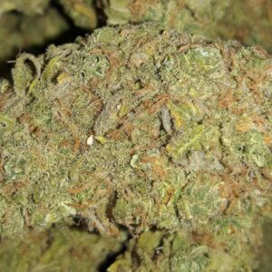 Clementine Cannabis Strain UK