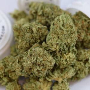 Jedi Kush Weed Strain UK