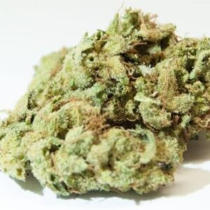 Sour Glue Cannabis Strain UK