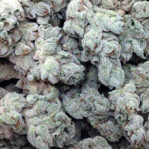 Copacabana Marijuana Strain UK