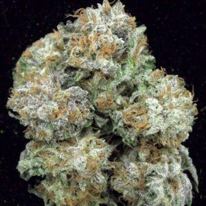 White Kush Marijuana Strain