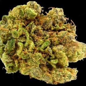 Kings Bread Marijuana Strain UK