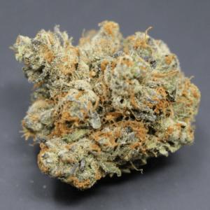 Blue Cheese Cannabis Strain UK